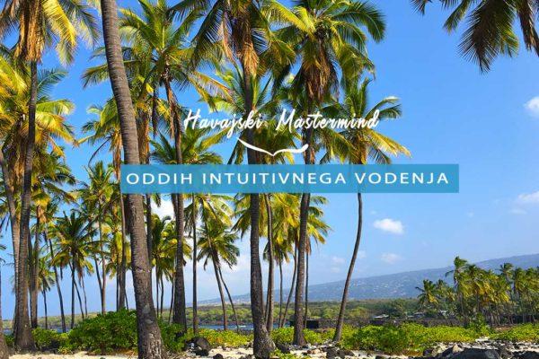 hawaii-mastermind-naslovnica-slo